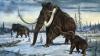 Uimitor! Savanţii vor să cloneze un animal preistoric