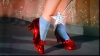 Pantofii lui Dorothy din Vrăjitorul din Oz, scoşi la licitaţie
