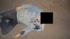 Un bărbat a fost înjunghiat în plină stradă
