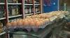 Ouăle produse în R. Moldova ar putea fi exportate în UE