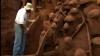 Oraşul subteran al furnicilor care rivalizează cu Marele Zid Chinezesc (VIDEO)