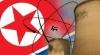 Coreea de Nord renunţă la programul nuclear