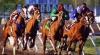 Competiţia de curse de cai şi schiuri a ajuns la cea de-a 105-a ediţie