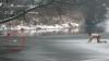 Gest disperat: Complet gol şi în genunchi pe un râu să-şi salveze câinele