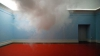 Cum norii au devenit exponate de muzeu FOTO