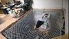 Cele mai originale idei pentru patul de acasă FOTO