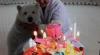 Petrecere mare în China pentru un pui de urs polar (VIDEO)