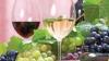 Onişenko, mulţumit de calitatea vinurilor din Moldova