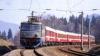 Şevciuk: Reluarea circulaţiei feroviare prin stânga Nistrului va duce la creşterea producţiei