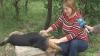 Cruzime fără margini! Câini ucişi şi lăsaţi să zacă pe străzile din Chişinău VIDEO
