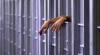 Condamnaţi la închisoare pentru trafic de copii