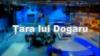 Ţara lui Dogaru despre cât de pregătiţi sunt tinerii jurnalişti să schimbe situaţia din mass media