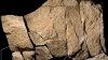 Au fost descoperite cele mai vechi reprezentări artistice