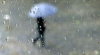 Vreme preponderent instabilă în următoarele 7 zile