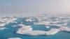 Oamenii de ştiinţă au făcut o descoperire UIMITOARE în Arctica