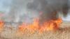 Furia naturii loveşte din nou! Taiwan, New Mexico şi Australia printre statele afectate