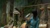 În vârstă de 10 ani, un papagal imită peste 50 de sunete VIDEO