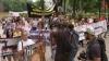 Proteste la Kiev: Oamenii sunt nemulţumiţi de uciderea în masă a câinilor vagabonzi