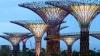 """""""Capitala botanică a lumii"""". Construcţii având înălţimea unor zgârie-nori şi forma unor copaci FOTO"""