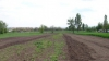 Business ilegal la Căuşeni: Autorităţile locale au vândut mai multe terenuri