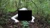 """Creatura bizară, descoperită într-o pădure. """"Cred că a fost om, dar a renunţat la trupul său şi s-a mutilat"""""""