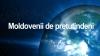 Moldovenii de peste hotare spun NU unei agenţii a diasporei şi cer crearea unui minister