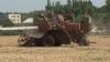 Moldova, lovită de secetă cumplită: Semănăturile de grâu sunt afectate aproape în totalitate, iar agricultorii sunt disperaţi