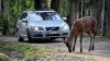 Volvo dezvoltă trei noi sisteme de siguranță activă