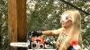 Activistele de la Femen au tăiat o cruce în centrul Kievului VIDEO