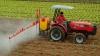Despre agricultură ca business, riscuri şi ce trebuie să facă statul şi fermierii