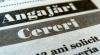 Date oficiale: A scăzut numărul şomerilor din ţară
