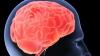 """Creierul uman are propriul """"detector"""" al ironiei!"""