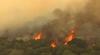 Incendii de vegetaţie în SUA. Zeci de pompieri luptă să stingă flăcările