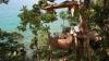 Restaurant în copac: Parcă ai fi într-un cuib de pasăre amenajat printre crengile copacilor VIDEO