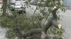 Taifunul Bolaven a lovit Coreea de Nord şi a ajuns în Rusia