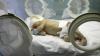 Studiu UNICEF: Mortalitatea infantilă a scăzut aproape cu jumătate