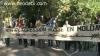 Moldovenii la APCE: Cer retragerea trupelor ruse din Moldova