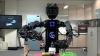CIROS, robotul care ştie să facă de mâncare VIDEO
