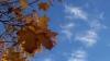 Cer variabil şi 15 grade în Capitală, promit meteorologii