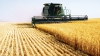 Astăzi, în Moldova, este marcată Ziua Agricultorului