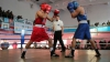 Capitala, mai bună la box: Pugiliştii din Chişinău au câştigat mai multe medalii decât cei din Grimăncăuţi