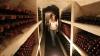 Rusia ar putea impune noi restricţii la exportul de vin moldovenesc