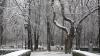 În următoarele zile Capitala ar putea fi acoperită cu zăpadă