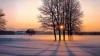 Soare blând în miez de iarnă anunţă meteorologii
