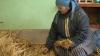 Majoritatea locuitorilor din satul Cotiujeni câştigă astfel o bucată de pâine: Facem 12 lucrări pentru şapte lei