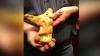 Un australian a dat lovitura cea mare. A găsit o bucată de aur de 5,5 kilograme