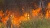 Flăcările mistuie Australia. Peste 150 de focare au fost înregistrate în ultimele zile