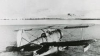 Avion din Al Doilea Război Mondial, descoperit în gheaţă după şapte decenii