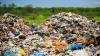 Jumătate din mâncarea de pe Glob este aruncată la gunoi