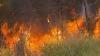 Focare noi de incendii de pădure în Australia: Cel puţin 100 de oameni sunt daţi dispăruţi